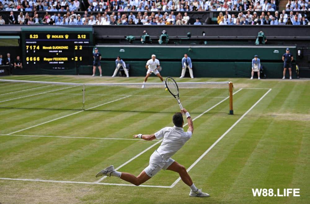 tennis quần vợt là gì
